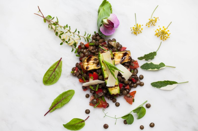 Lentil, courgette and pecorino salad