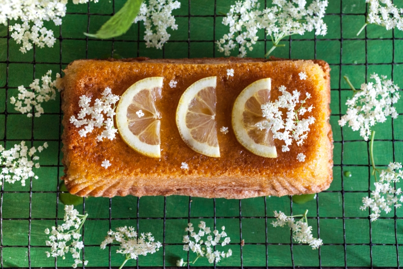 Elderflower & lemon polenta cake